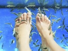 Doctor Fish -jalkahoito